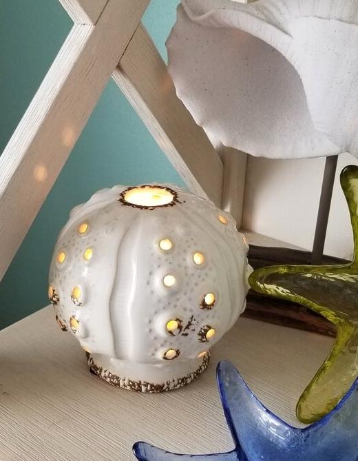 Sea Urchin Lamp Desk Novelty