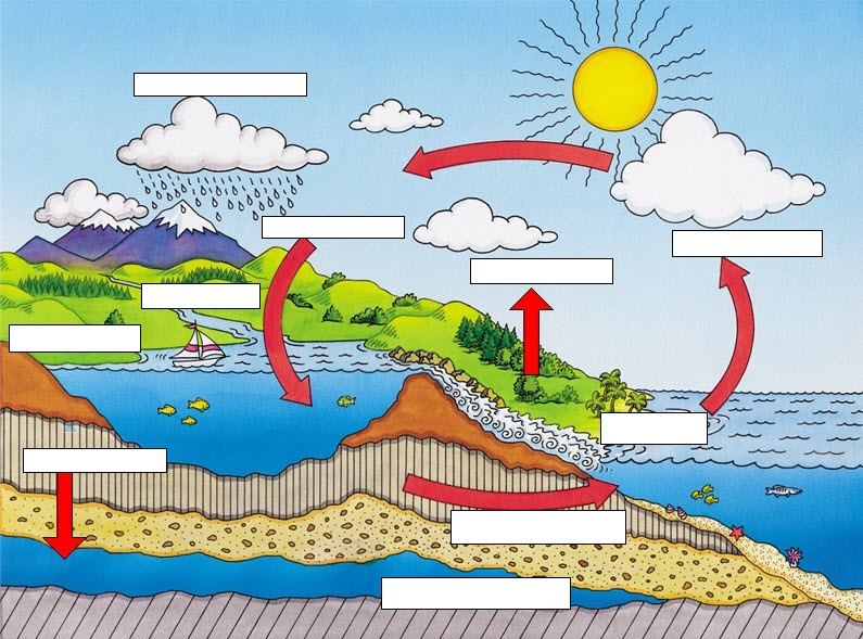 Water cycle cycling of matter exit slip guided questions from the water cycle article and water cycle diagram ccuart Image collections
