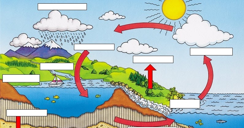 Water Cycle Cycling Of Matter
