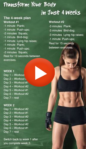 fitness workout program