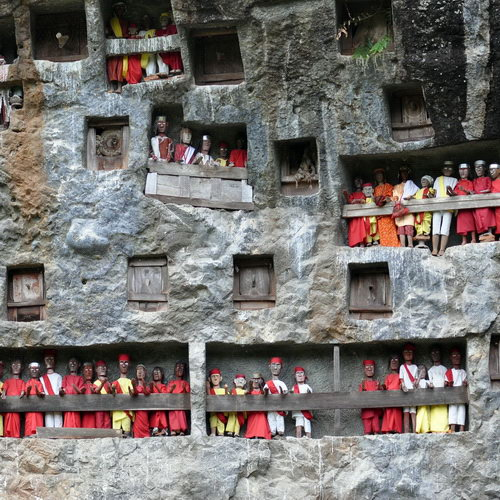 Tinuku Travel Lemo graves in Tana Toraja, magical feel the ancestral culture nobility in rock cliffs towards Puya