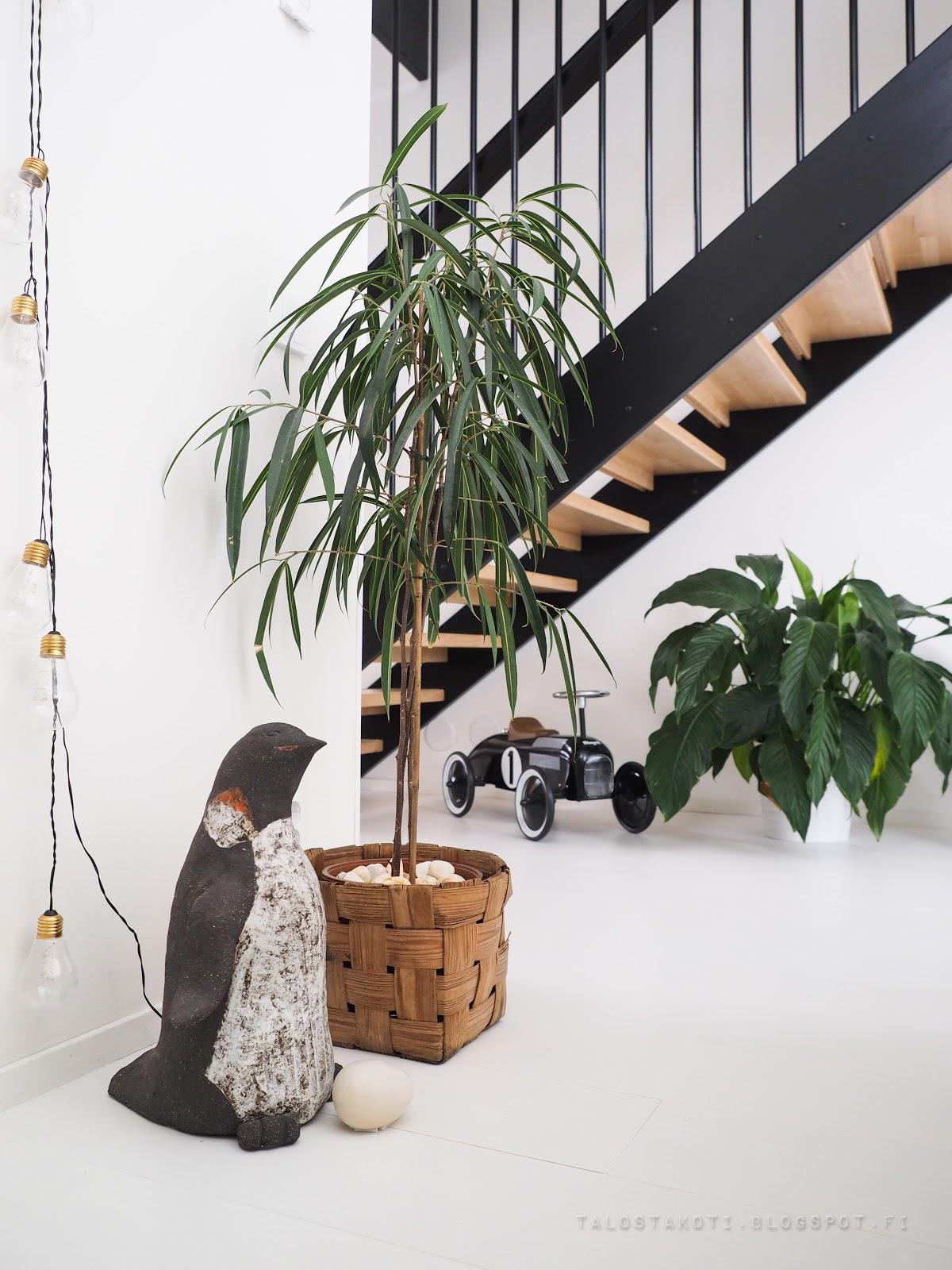 keramiikka, portaikko, pinnakaiteet