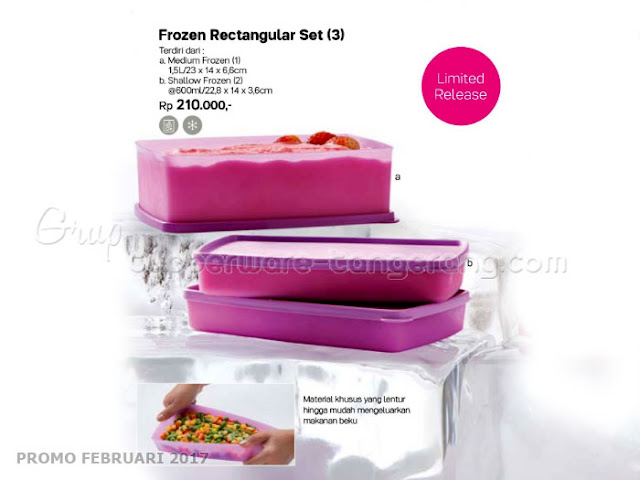 Frozen Rectangular set 3 Tupperware Promo Februari 2017
