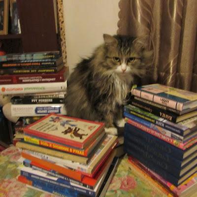 Том, ученый кот