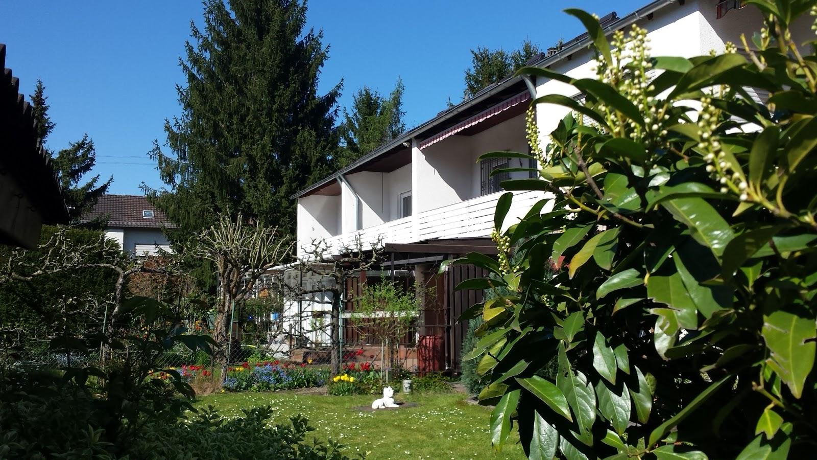 Sträucher Für Kleine Gärten Schönsten Einrichtungsideen G A4rten Gestalten Beste Laubbäume Den Garten Schnell Wachsende Laubb C3 A4ume F Bcr