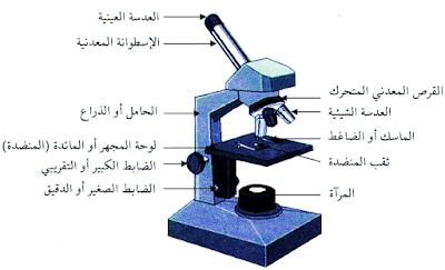 المجهر الضوئي - الموسوعة المدرسية