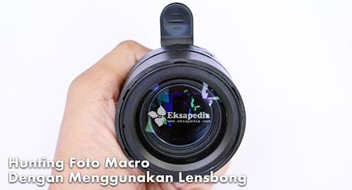Hunting Foto Macro Dengan Lensbong | Eksapedia