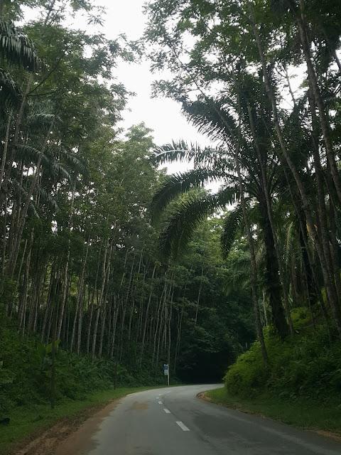 A road to Jalong Tinggi, Sungai Siput, Perak