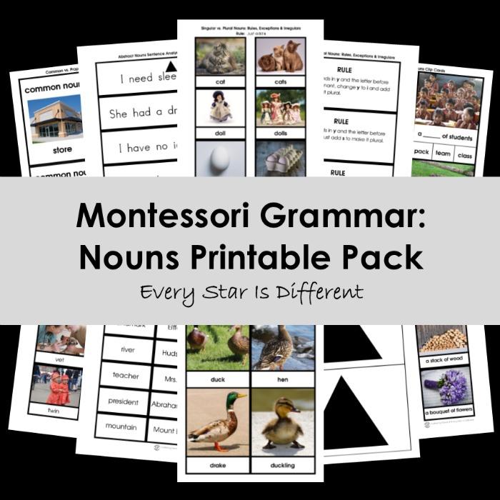 Montessori Grammar: Nouns Printable Pack