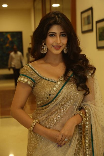 sonarika bhadoria all movie list