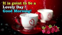 100+ Latest Good Morning Images Free Download for Whatsapp