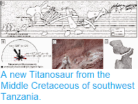 https://sciencythoughts.blogspot.com/2014/10/a-new-titanosaur-from-middle-cretaceous.html