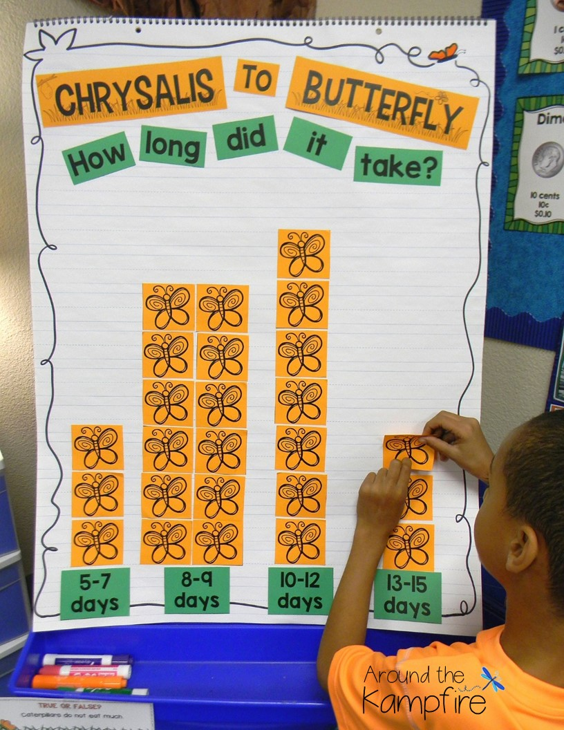 Butterfly Math and Science Activities - Around the Kampfire