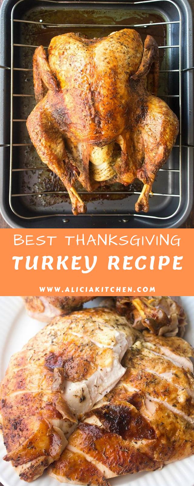 BEST THANKSGIVING TURKEY RECIPE (HOW TO COOK A TURKEY)