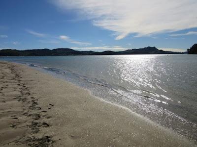 Playa de Whitianga, Península de Coromandel, Nueva Zelanda