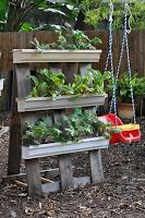 mini jardin vertical con palets