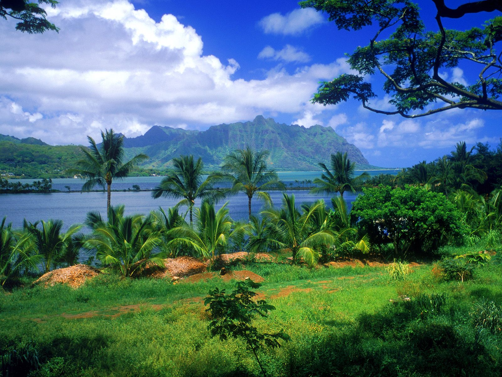 Tropical Beautiful Paradise Wallpapers | HD Wallpapers
