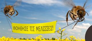 Ενημέρωση για προστασία των μελισσών από ψεκασμούς