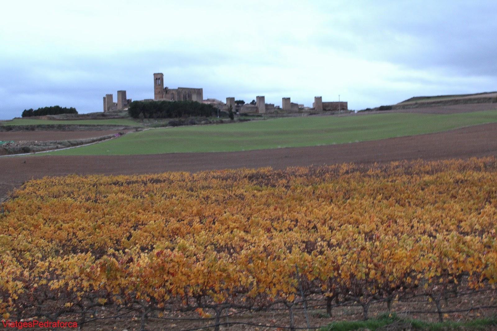 Panoramica de Artajona murallas medievales Navarra