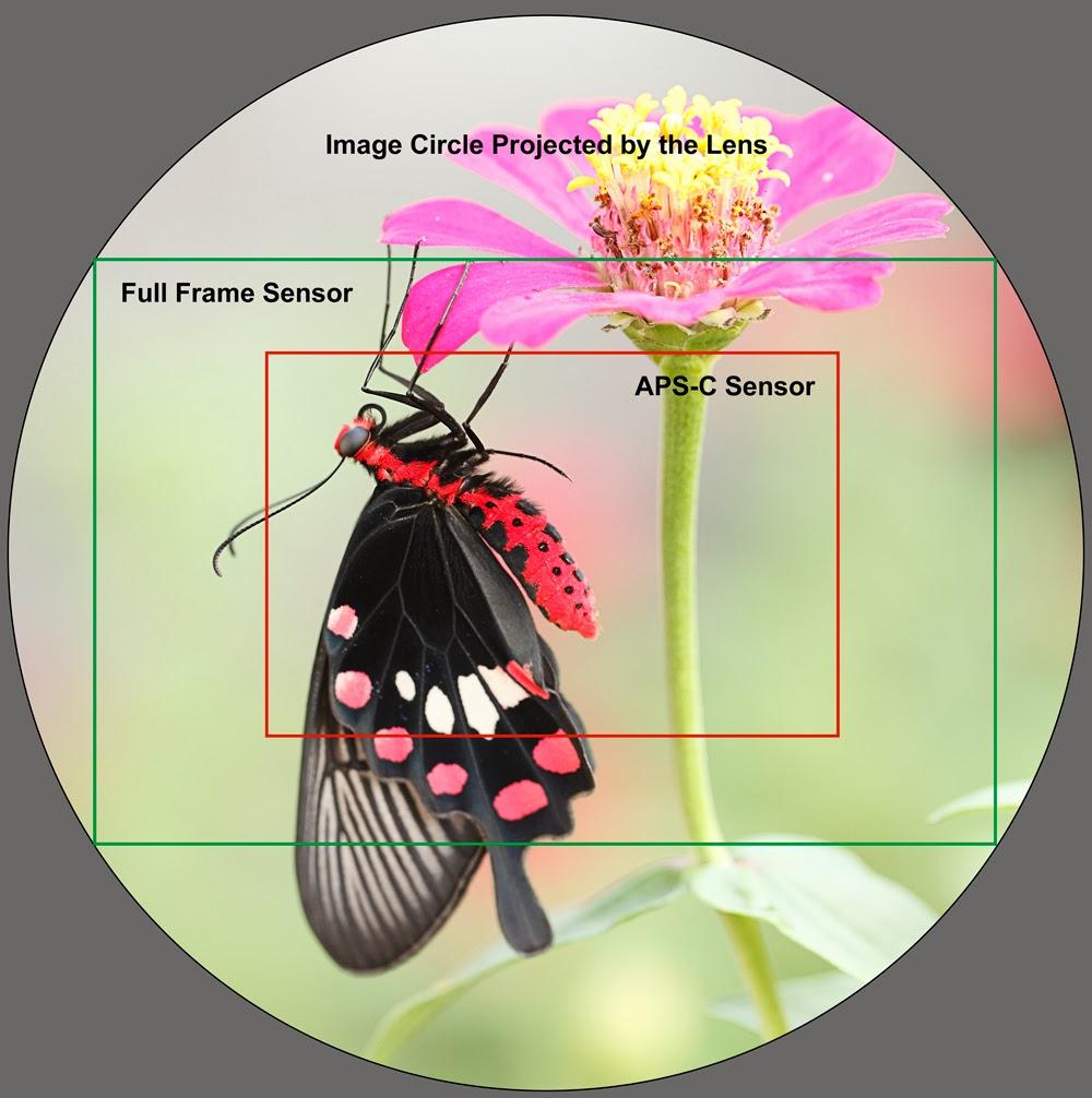 Resultado de imagen de sensores camaras fotograficas