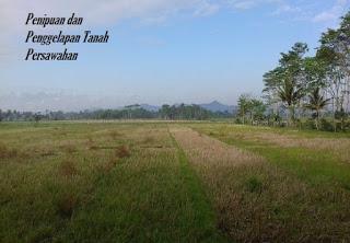 Penipuan dan penggelapan tanah sawah