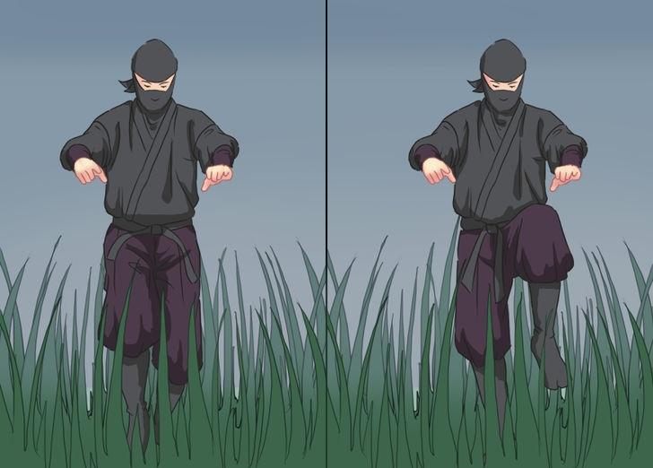 ninja olmak