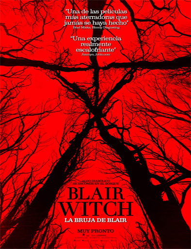 Ver Blair Witch: La bruja de Blair (2016) Online