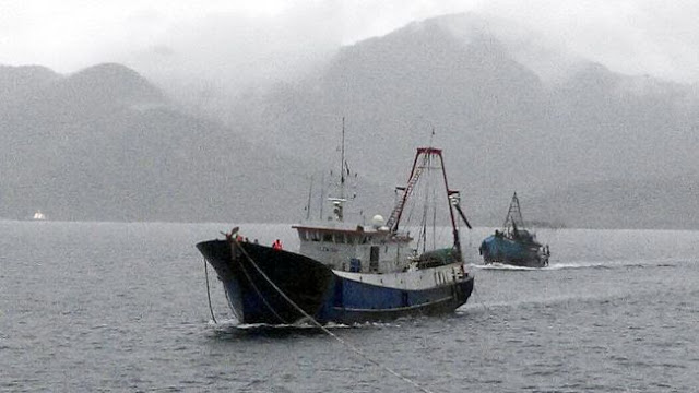 Bayang China dalam Mimpi Indonesia Jadi Poros Maritim Dunia