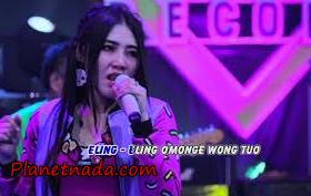 Lagu Via Vallen Wong Edan Kuwi Bebas