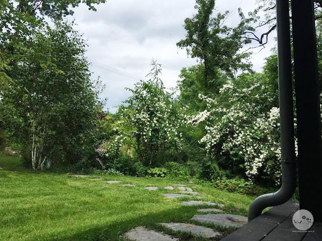 projekt_ogrodu_naturalistycznego jak urzadzic
