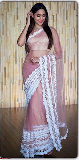 Pragya Jaiswal in lovely Transparent Lace Border Work Saree 2.jpg