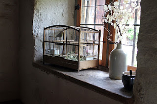 Vogelkooi aan het raam