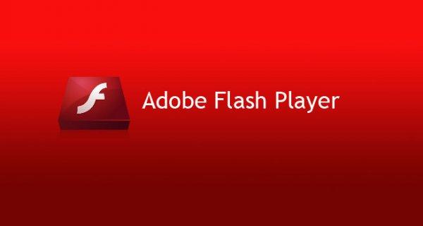 Hướng dẫn cài đặt Adobe Flash vào Kali linux