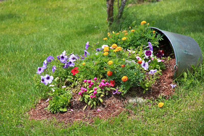 Come Fare Una Cascata In Giardino.Come Creare Una Cascata Di Fiori Con Un Vaso Rovesciato Guida Giardino