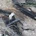 Drone de Irán derribado por las FDI tenía como fin atacar a Israel