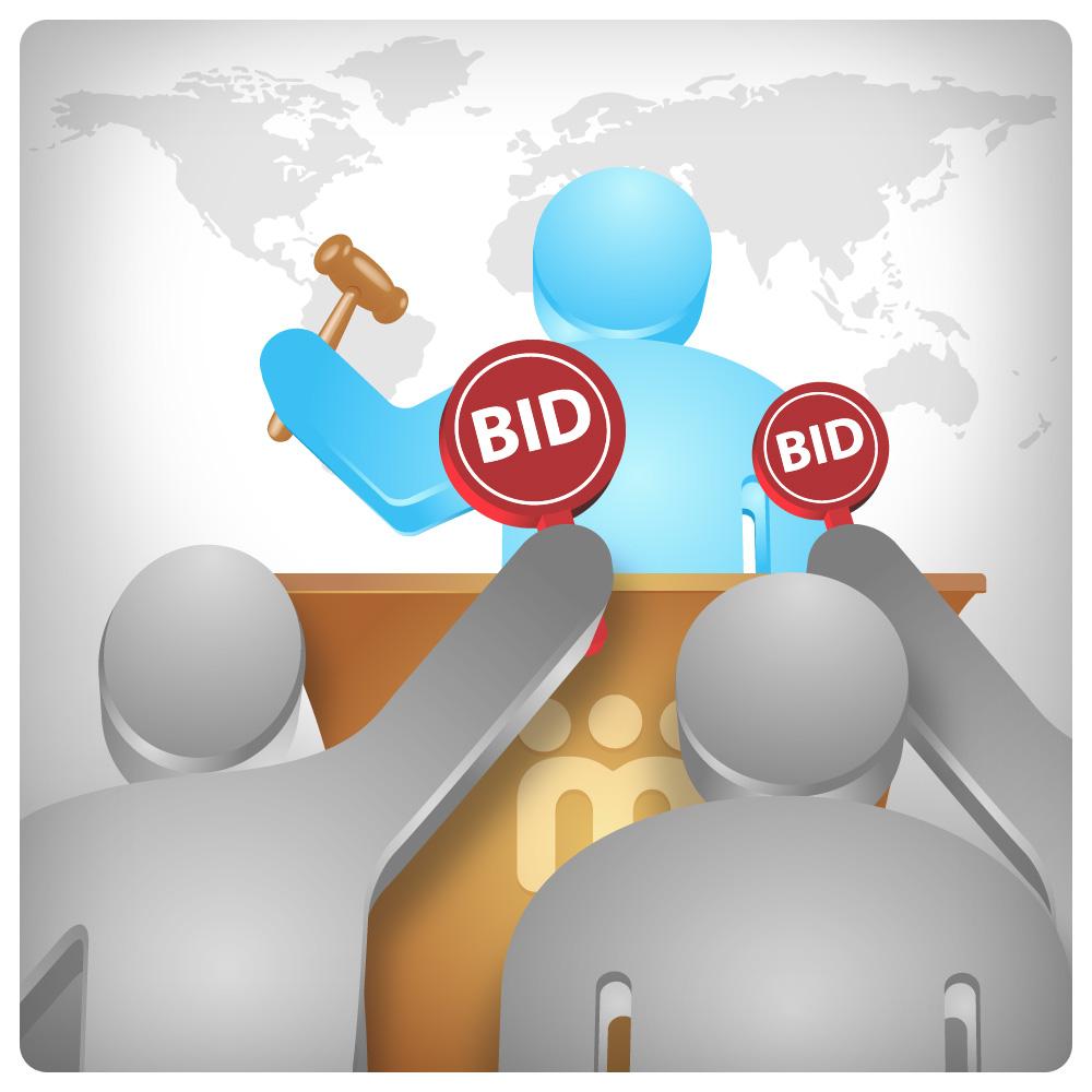 how to make a bidding website