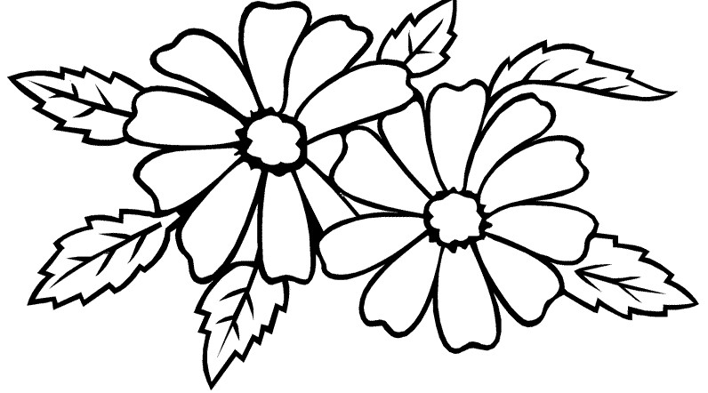 gambar mewarnai bunga melati terbaru