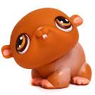 Littlest Pet Shop Small Playset Hamster (#35) Pet