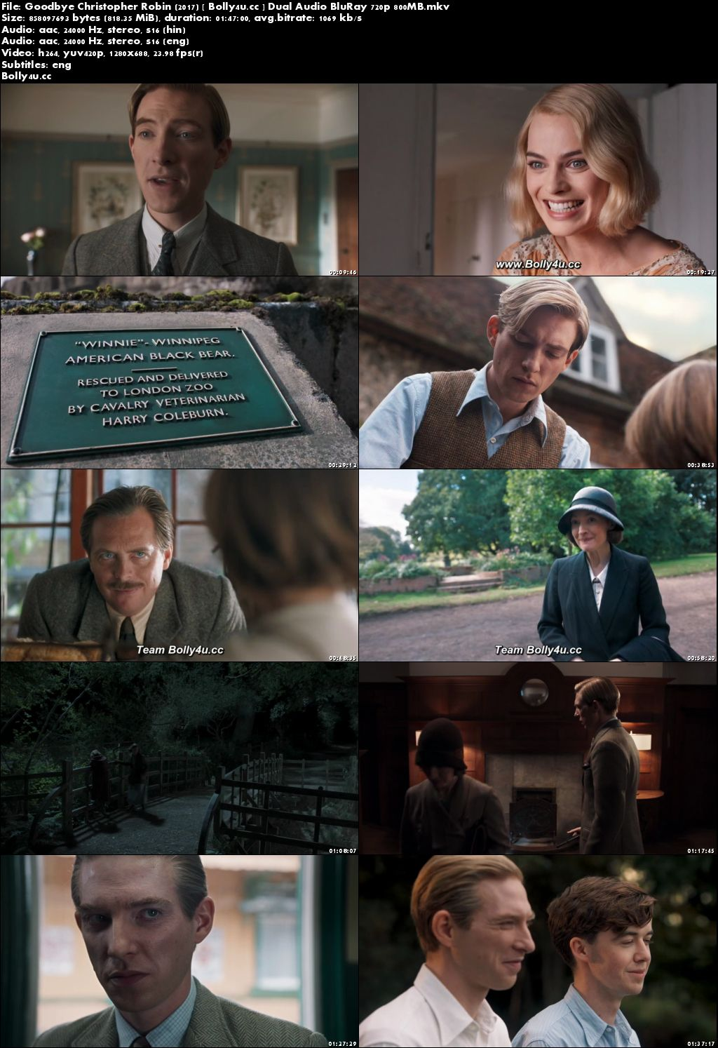 Goodbye Christopher Robin 2017 BluRay 350MB Hindi Dual Audio 480p Download