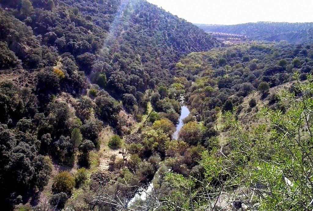 El Canal del Guadarrama - Alfonsoyamigos
