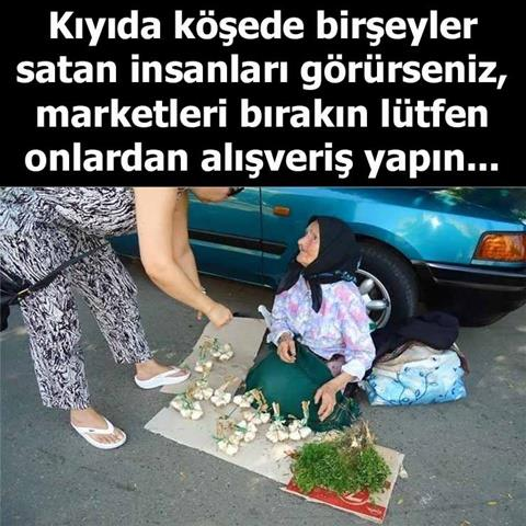 sarımsak, maydonuz, tere, soğan, teyze, köylü kadın, çiftçi kadın, ekmek parası, pazar, seyyar satıcı