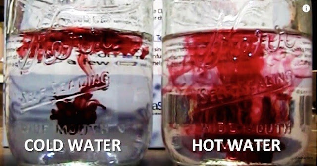 Cold Water VS Warm Water: Which One Is Damaging Your Health