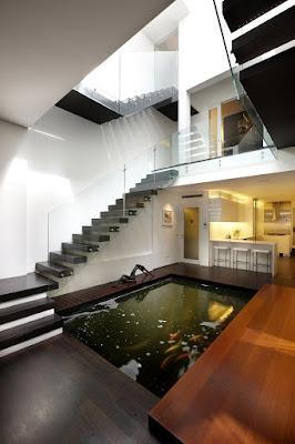 บ่อปลาในบ้าน