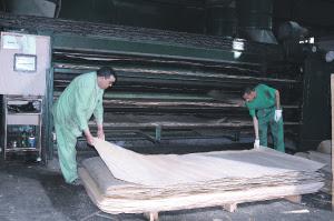 شركة لصناعة الخشب توظيف 20 عامل على الالات التقطيع بالدارالبيضاء