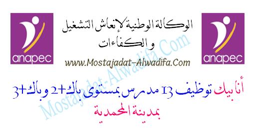 أنابيك توظيف 13 مدرس بمستوى باك+2 وباك+3 بمدينة المحمدية