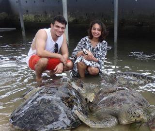 Bali-turtle-island-tour