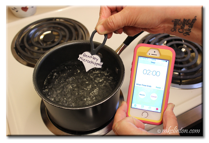 Twigo tag going into pot of boiling water and iPhone with 2 minutes timer
