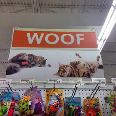 Gatos en anuncio