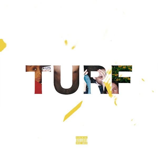 Amine - Turf - Single Cover