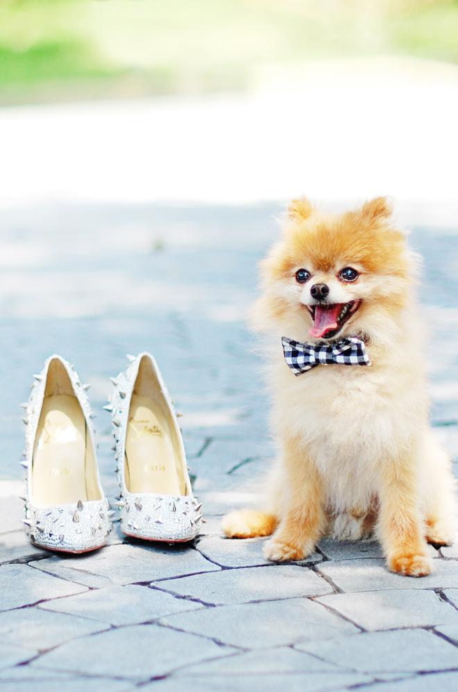 DIY No Sew Wedding Bow Tie